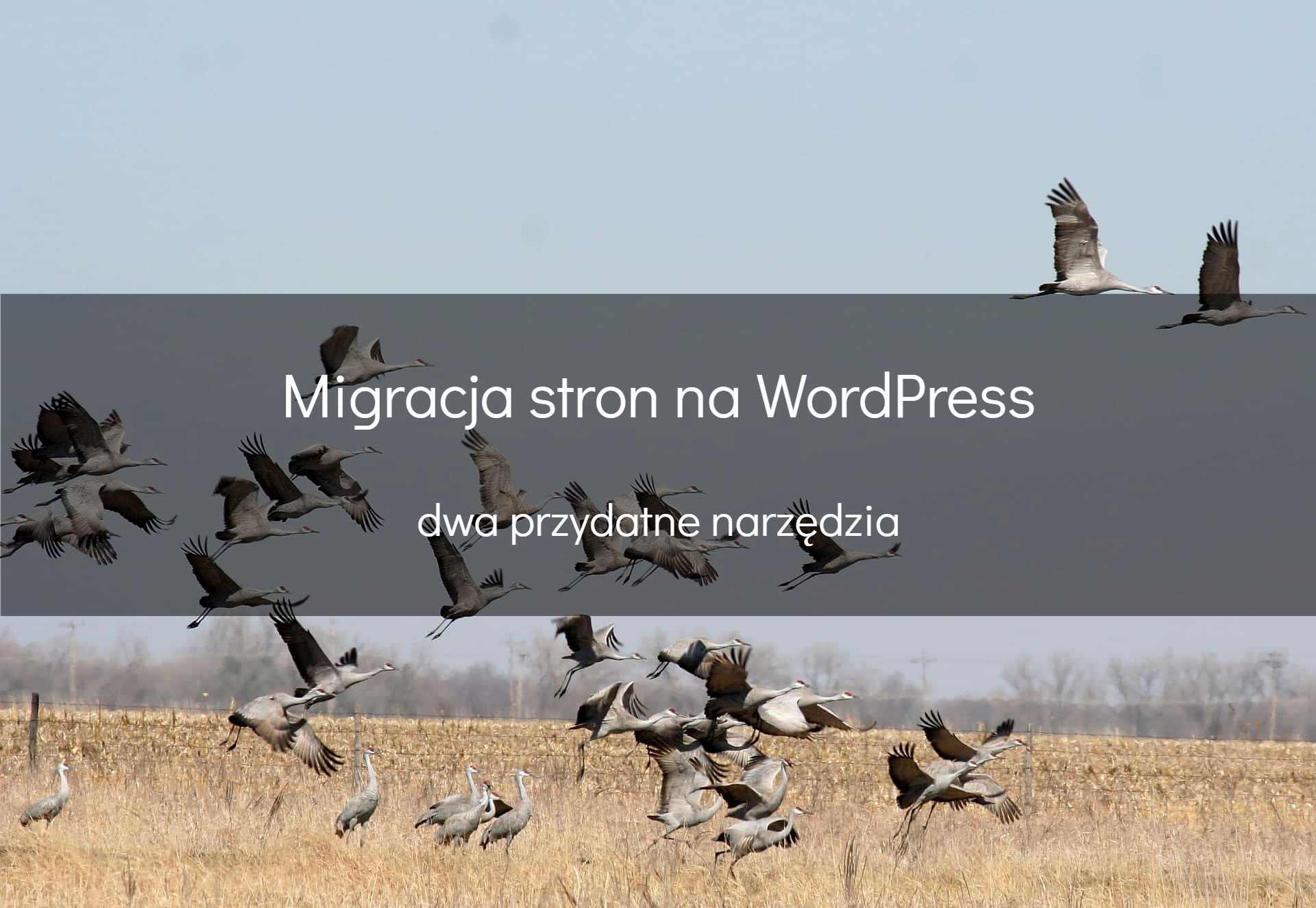 Migracja WordPress – jak zrobić todobrze?