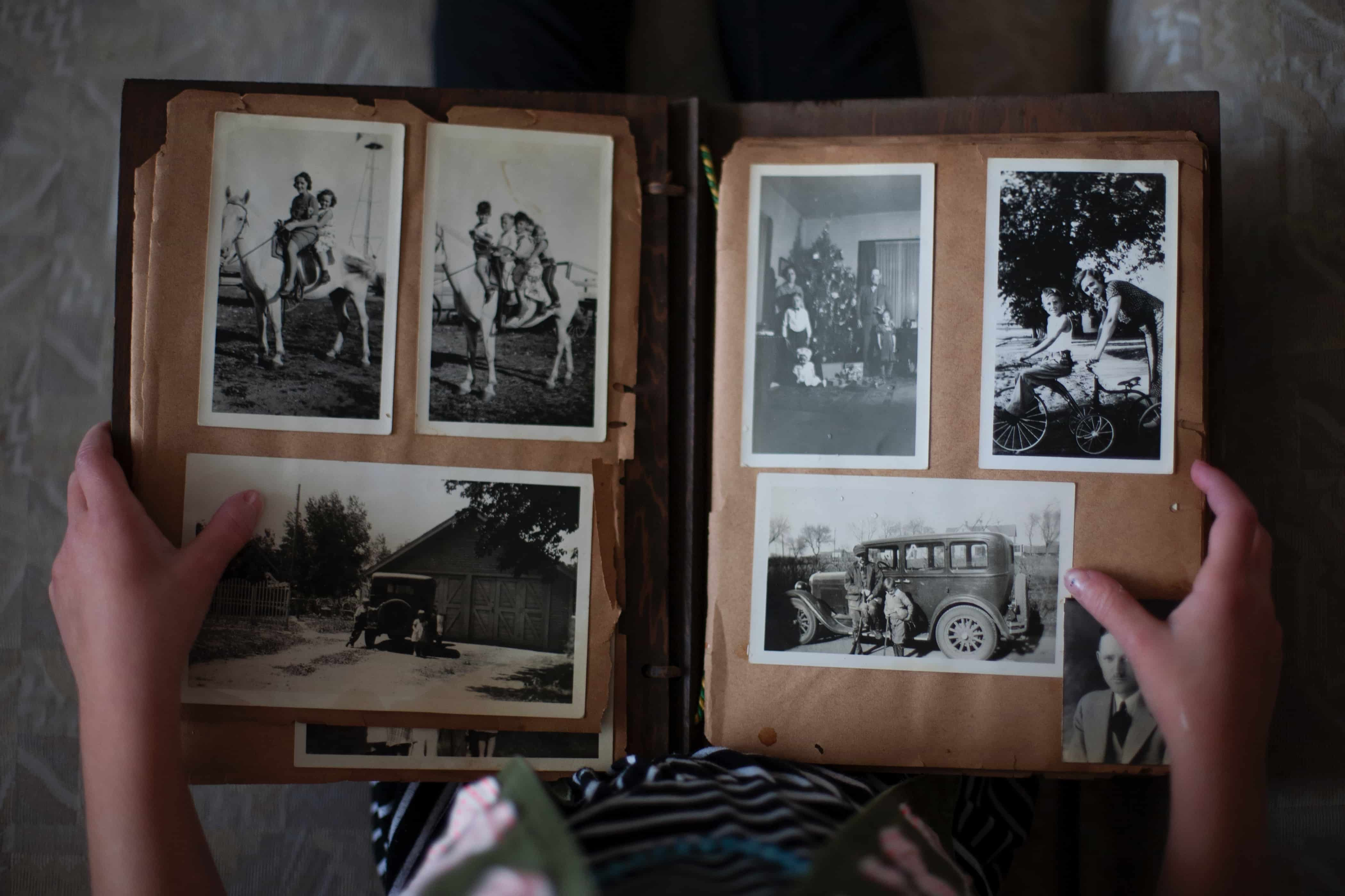 Darmowe zdjęcia - album