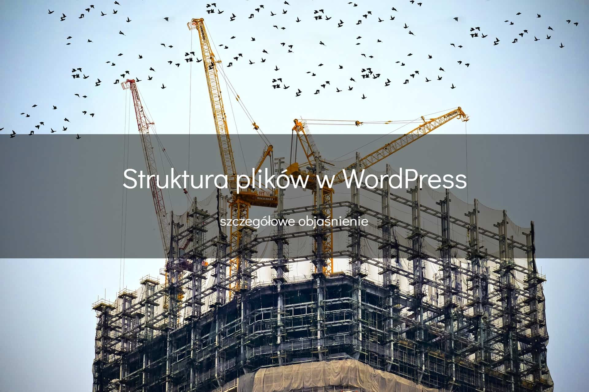 Struktura plików w Wordpress - okładka