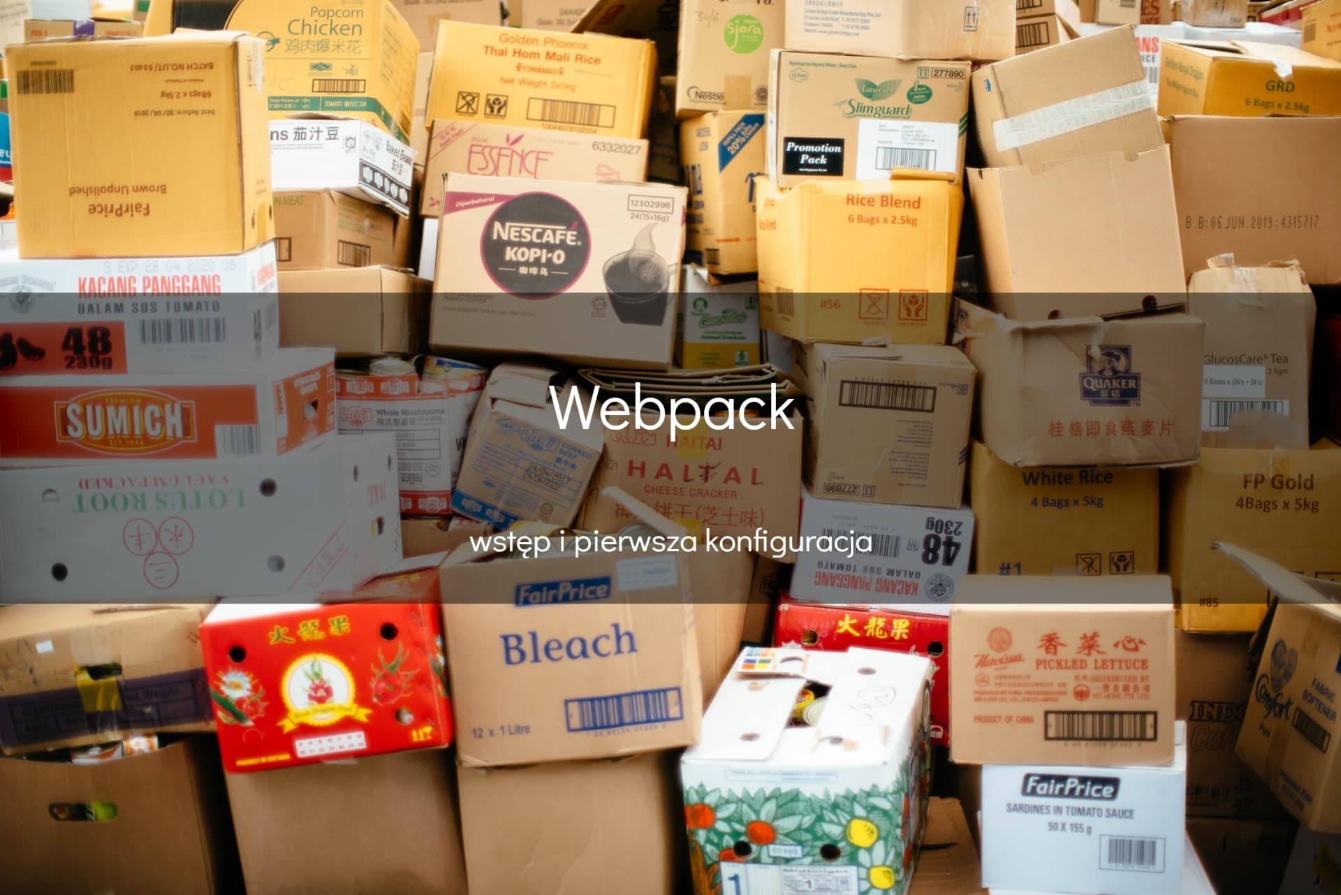 Webpack - okładka