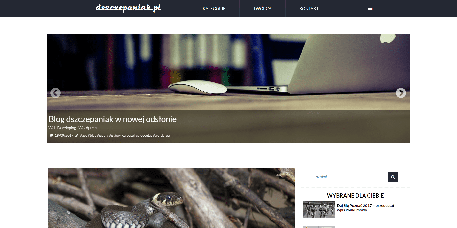 Case study bloga - pierwszy własny layout