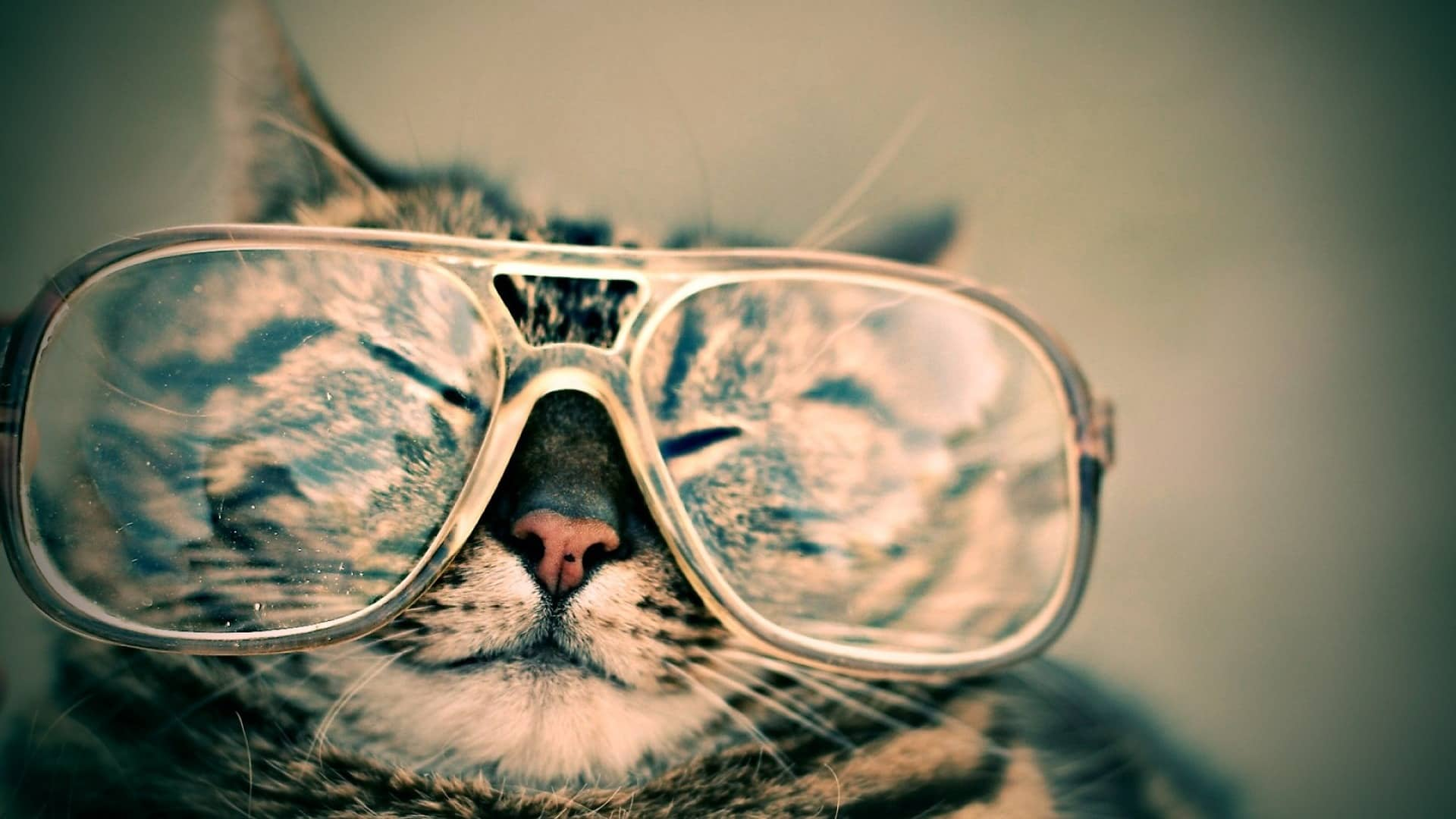 Zdrowie wpracy programisty - okulary
