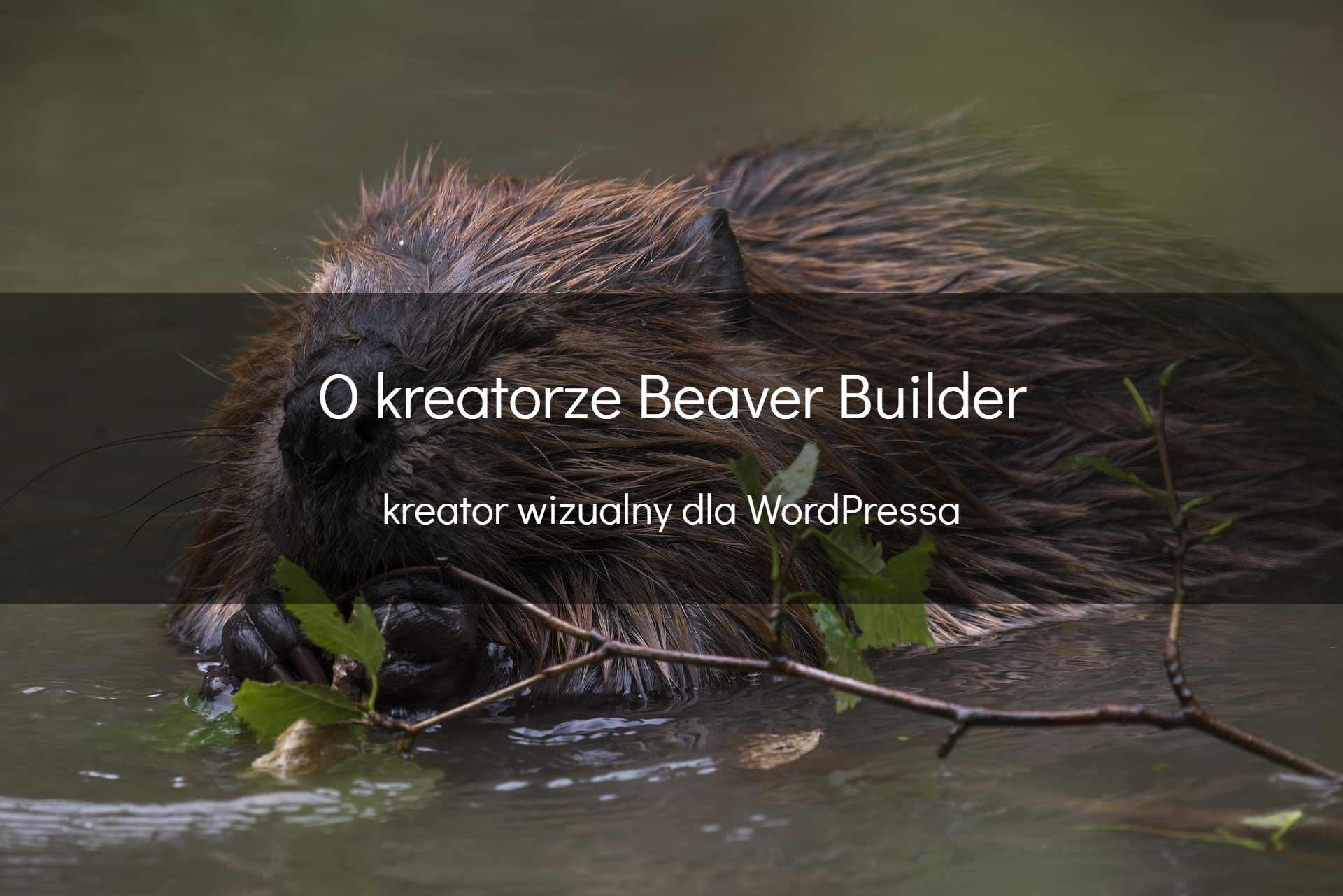 Beaver Builder - okładka