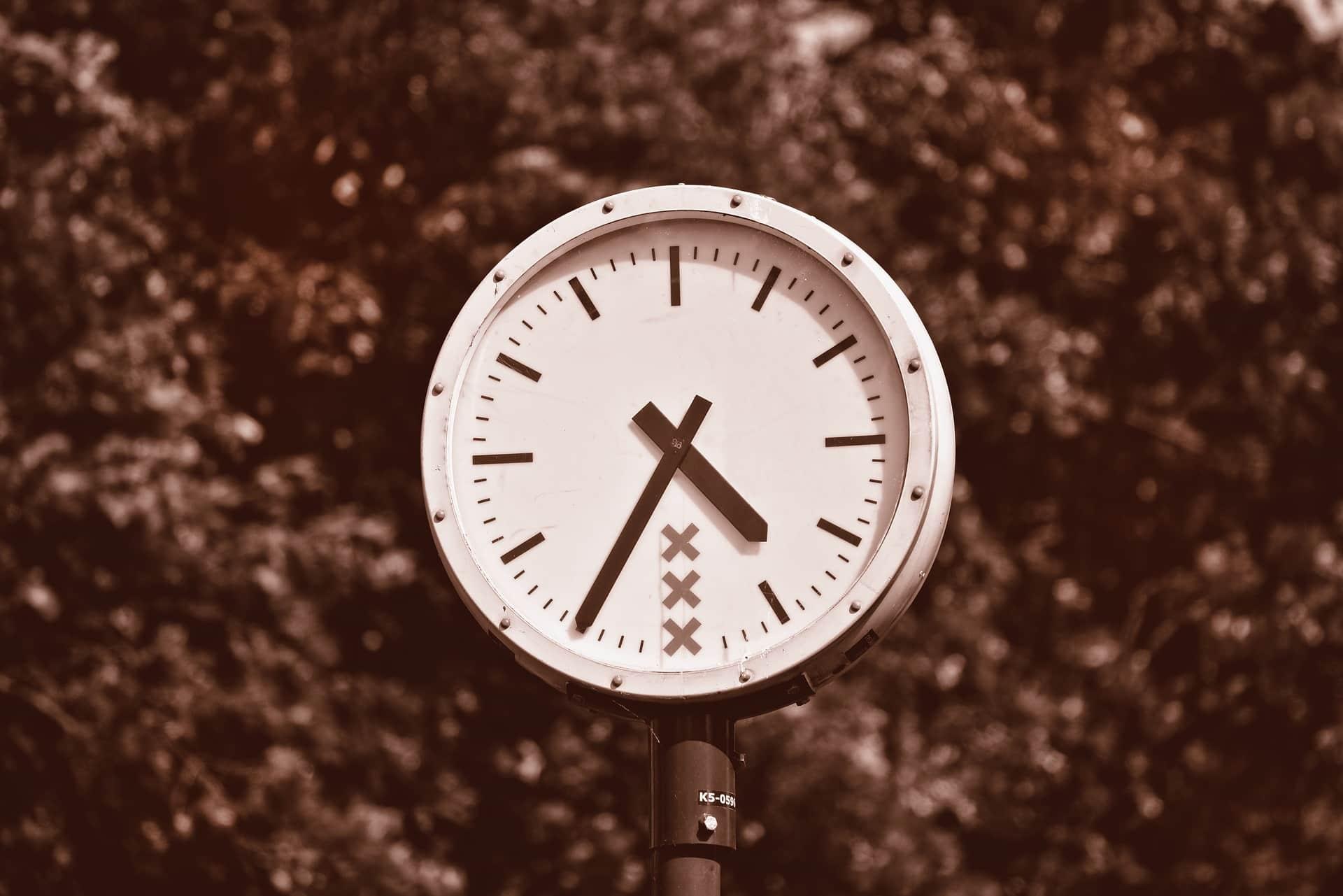 Zegar pośród liści